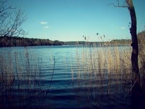 okolica-jezioro